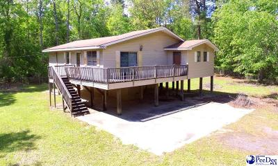 Effingham Single Family Home For Sale: 7043 Fork Road
