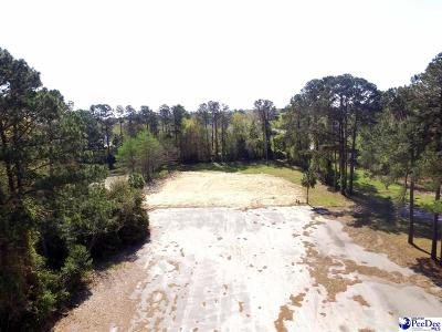 Florence Residential Lots & Land For Sale: 1000 S Cashua Drive