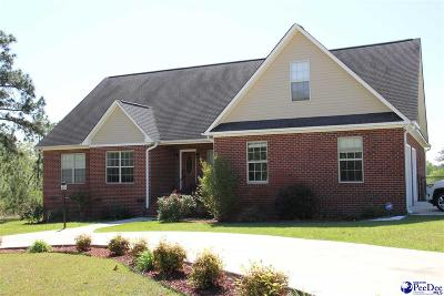 Hartsville Single Family Home For Sale: 451 Timberchase Dr