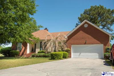 Darlington Single Family Home Uc/Show For Back Up: 245 Horseshoe Bend Drive
