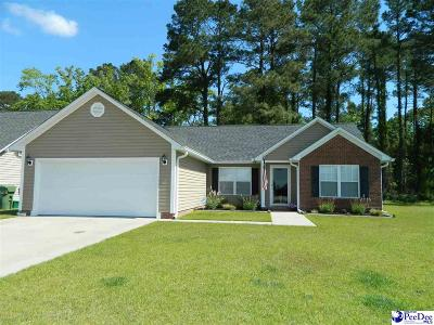 Effingham Single Family Home For Sale: 3038 Red Berry Circle