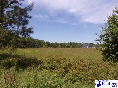 Florence, Flrorence, Marion, Pamplico Commercial Lots & Land For Sale: Leggs Circle