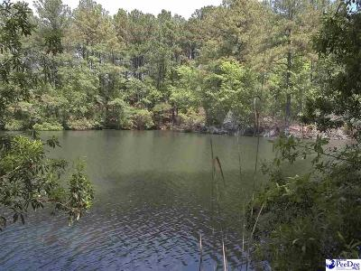 Dillon SC Residential Lots & Land For Sale: $325,000