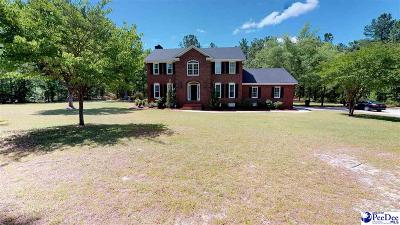 Hartsville Single Family Home For Sale: 539 Sail Club Drive