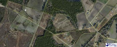 Timmonsville Residential Lots & Land For Sale: Shortcut Road