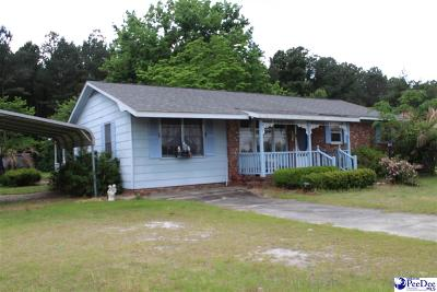 Darlington Single Family Home For Sale: 820 Oleander Drive