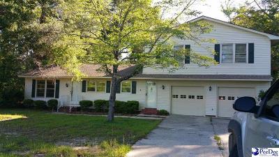 Johnsonville Single Family Home For Sale: 218 Huggins Eaddy St