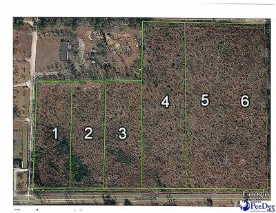 Residential Lots & Land For Sale: 502 Dudley Road