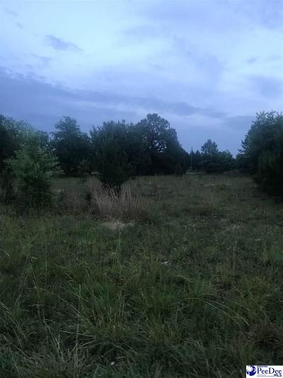 Florence Residential Lots & Land Uc/Show For Back Up: 2030 E Howe Springs Road