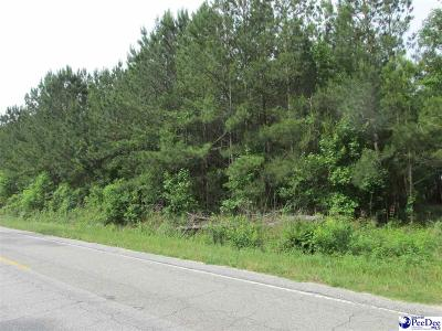 Effingham Residential Lots & Land For Sale: Parcel 38 Friendfield Road