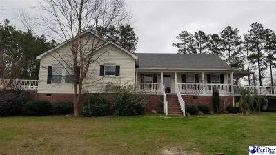 Hartsville Single Family Home For Sale: 2405 Topsail Dr