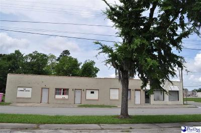Florence, Flrorence, Marion, Pamplico Commercial For Sale: 217 N Pine Street