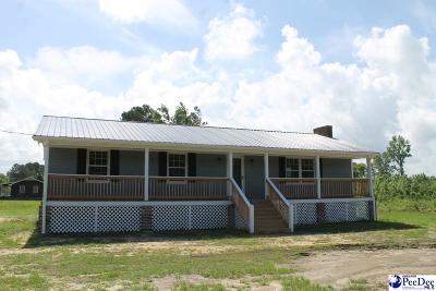 Dillon County Single Family Home New: 4928 Hwy 301