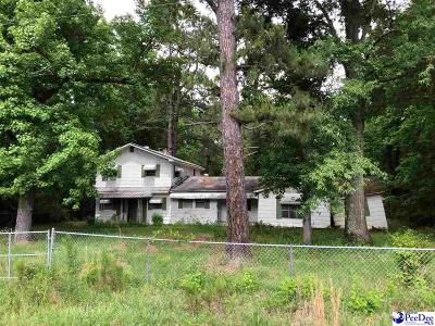 Kingstree Single Family Home For Sale: 80 Kindale Park Road