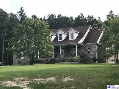 Hartsville Single Family Home For Sale: 552 Underground Branch Rd