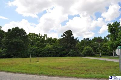 Marion County Residential Lots & Land For Sale: Lots 12, 13, 14 N Highway 41a