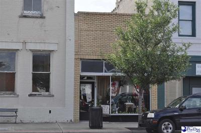 Florence, Flrorence, Marion, Pamplico Commercial For Sale: 219 N Main Street