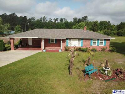 Single Family Home For Sale: 937 Central Road