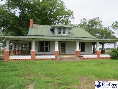 Little Rock Single Family Home For Sale: 3933 Highway 57