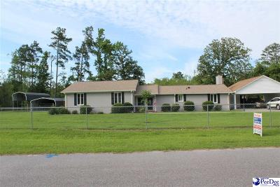 Marion SC Single Family Home For Sale: $209,900