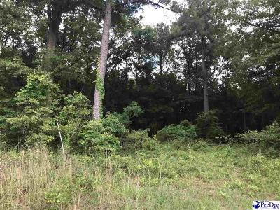 Residential Lots & Land For Sale: 3680 Winlark Drive