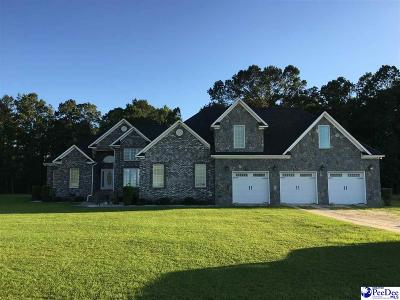 Single Family Home For Sale: 251 Cusaac Rd