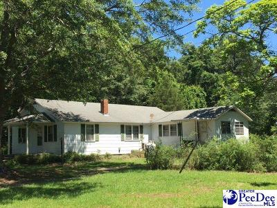 Hartsville Single Family Home For Sale: 3817 N Center Road