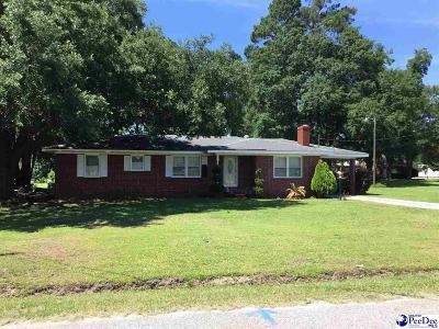 Johnsonville Single Family Home For Sale: 259 E Marion Street