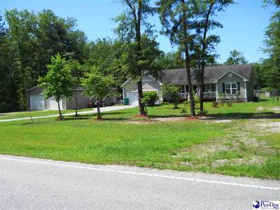 Marion SC Single Family Home For Sale: $218,000
