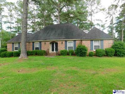Darlington Single Family Home Uc/Show For Back Up: 108 Tennessee Drive