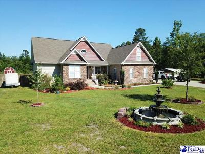 Single Family Home For Sale: 7442 Francis Marion Road
