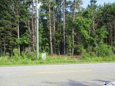 Florence Residential Lots & Land For Sale: 15 & 16 Tracts, Paul Jones Rd