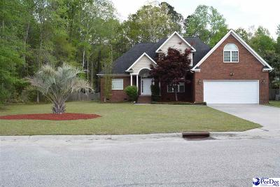 Florence Single Family Home For Sale: 1112 Rock Creek Road