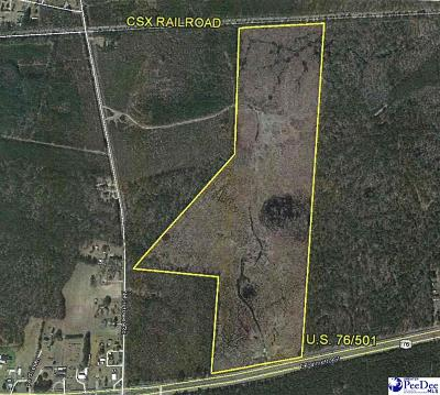 Florence SC Commercial Lots & Land Active-Price Change: $349,900