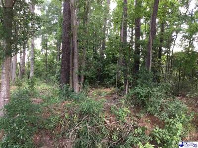 Hemingway Residential Lots & Land For Sale: Pasley Street