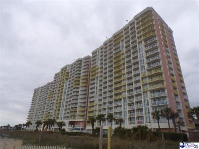 Condo/Townhouse Sold: 2801 S Ocean Bvld #432