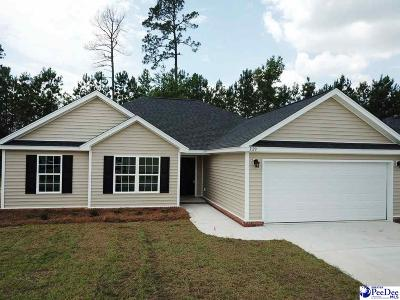 Florence SC Single Family Home For Sale: $175,049