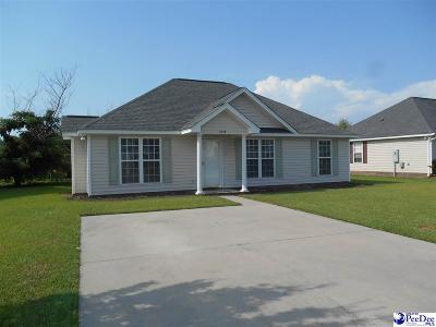 Effingham Single Family Home Uc/Show For Back Up: 2224 Stepping Stone