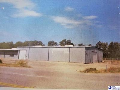Dillon County Commercial For Sale: 2731 S Highway 301