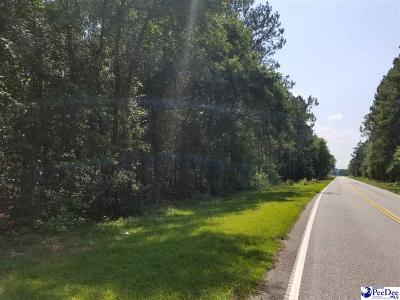 Blenheim Residential Lots & Land For Sale: Hwy 34