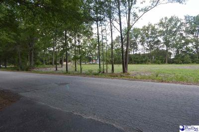 Commercial Lots & Land For Sale: 2 Lots Fourth St/Chesterfield/Elm Streets