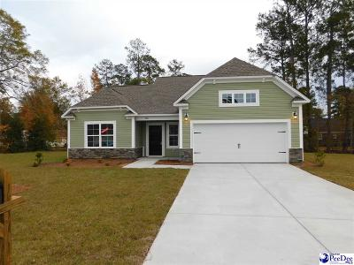 Florence SC Single Family Home For Sale: $173,573