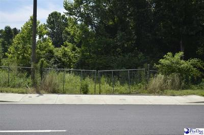 Florence Residential Lots & Land For Sale: 2588 TV Road