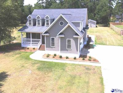 Darlington County Single Family Home For Sale: 123 Nez Perce Drive