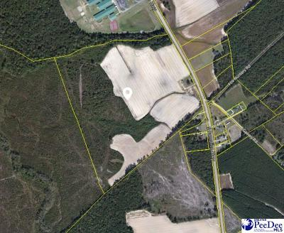 Pamplico Residential Lots & Land Uc/Show For Back Up: 2283 S Pamplico Hwy