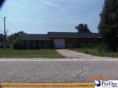 Hartsville Single Family Home For Sale: 205 E Seven Pine Street