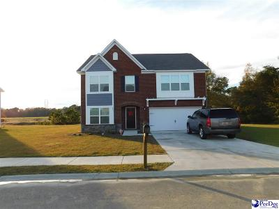 Florence County Single Family Home For Sale: 981 Grove Blvd
