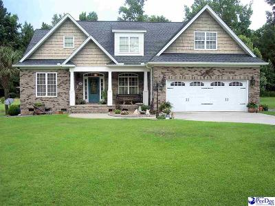 Hamer SC Single Family Home For Sale: $275,000