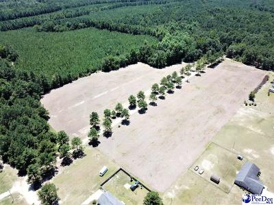 Dillon County Residential Lots & Land For Sale: Lot 50 Lexyryan Court