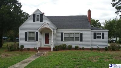 Lake City Single Family Home For Sale: 164 S McAllister St